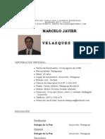 Curriculum Actualizado Marcelo