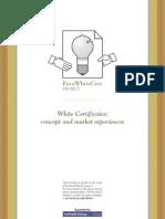 White Certificates - Concept & Market Experiences