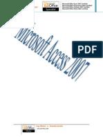 AccessPractico