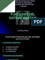 FUNCIONES DEL SISTEMA GNÁTICO