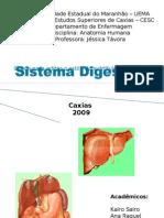 Anatomia do Sist. Digestório