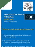 Aula 3 - Princípio de Purificação de Proteínas