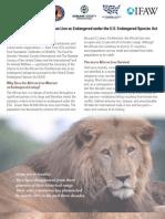 Lion Esa Factsheet