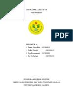 Laporan Praktikum Vii Fotosintesis Kel 6 Pbr'09