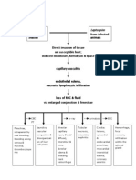 Pathophysiology-leptospirosis