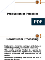 12856_Production of Antibiotics