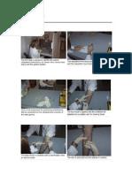 PHLEBOTOMY PROCEDUR1