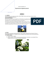 algodon-peruano
