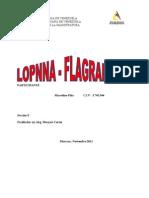 FLAGRANCIA - LOPNNA