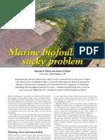 Marine Bio Fouling a Sticky Problem