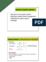 Metabolism Corpi Cetonici & Lipide Complexe