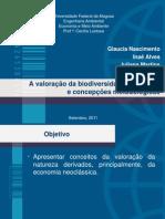 Valoração da biodiversidade-conceitos e concepções metodolóogicos