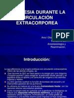 anestesia_circulacion_extracorporea