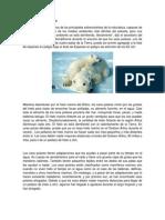 Osos Polares en Peligro