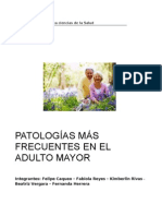 Patologias Mas Frecuentes en El Adulto Mayor.final