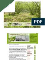 SAMRIOGLU Hazelnuts and Dried Fruits World Wide Web