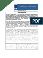 Convocatoria Director-a Oficina Arauca