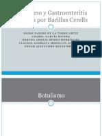Botulismo y Gastroenteritis Causado Por Bacillus Cerells