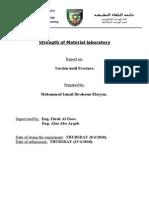 Torsion Lab Report
