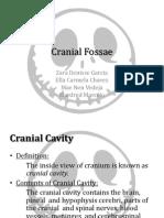 Cranial Fossae
