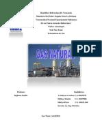 Trabajo.gas Natural.tratamiento de Gas