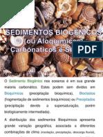 Aula_2_Sedimentos_Carbonáticos