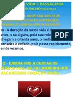 TEMA A VIDA É PASSAEIRA