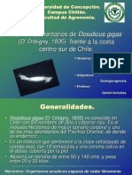 Hábitos alimetarios de Dosidicus gigas frente a la costa centro sur de Chile
