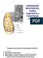 transp-ele-fosf