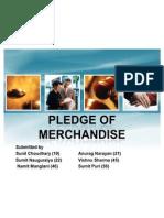 Pledge-1#1#1