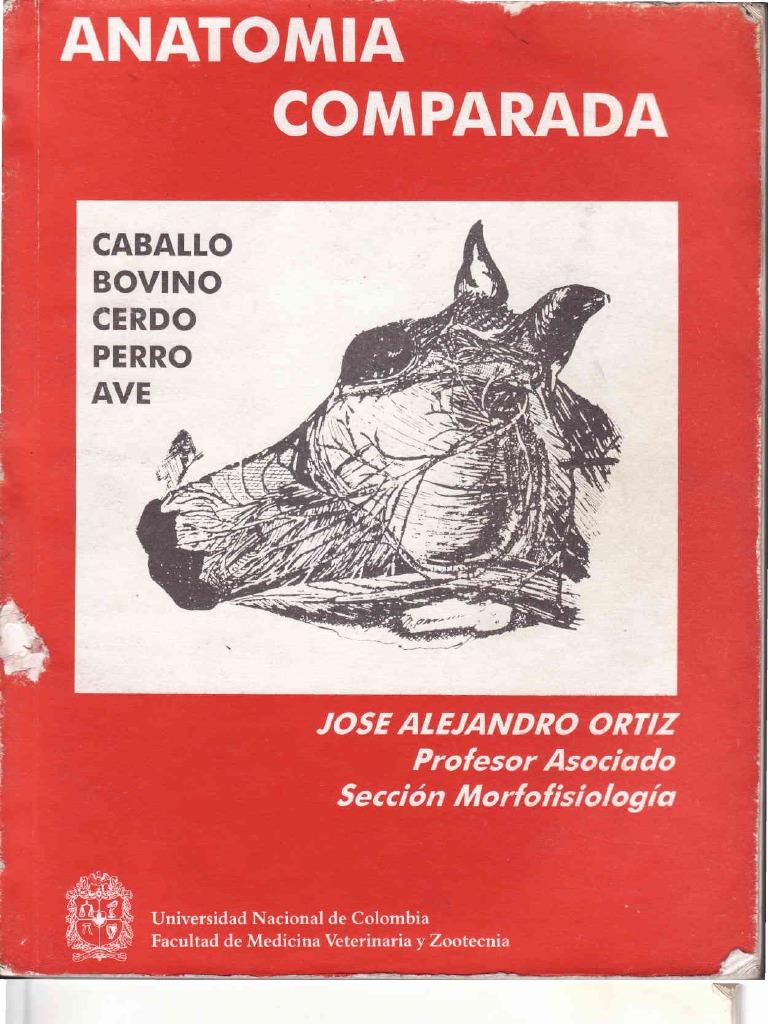 ANATOMIA COMPARADA 2009