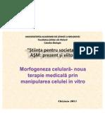 stem+ivf  D.M.