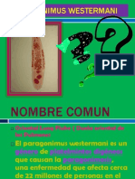 Presentación1  parasitos