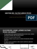 GESTIÓN DEL CULTIVO ARROZ-PECES