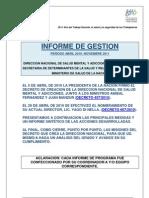 DNSMyA - Informe de gestión Abril 2010 - Noviembre 2011