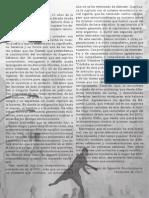 folleto 2001