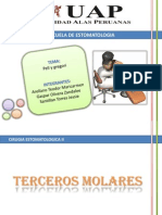 TERCEROS MOLARES