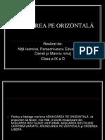 ARUNCAREA PE ORIZONTALA