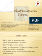 Anatomia Músculos do Membro Superior
