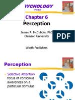 6 Perception Enhanced