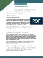 estudioorganizacional-091002205203-phpapp01