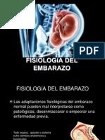 Fisiologia Del Embarazoclase