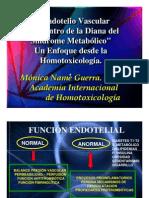 DM endotelio
