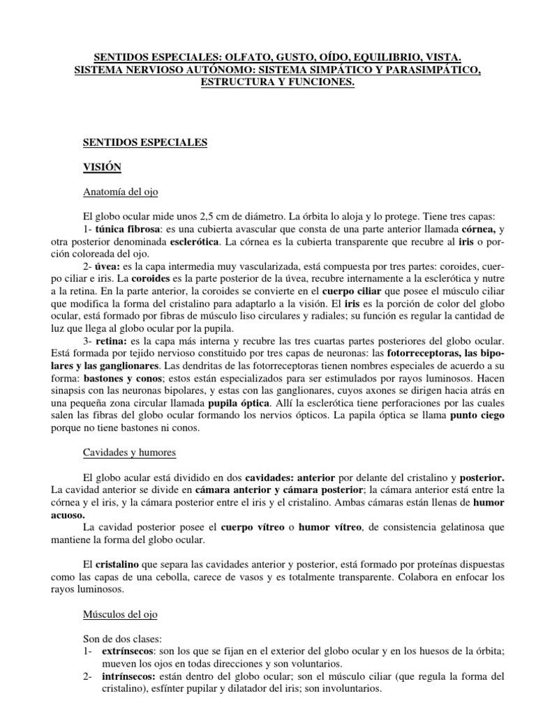 5 Unidad4 Los Sentidos (1)