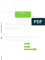 triptico sobre los musculos del abdomen