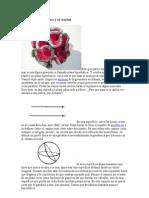 Geometría hiperbólica y el crochet