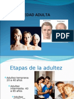 Edad Adulta Temprana Terminada-1