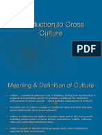 Introduction to Cross Culture (1)