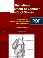 Guidelines Management of Common Bile Duct Stones