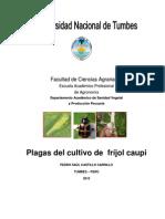 manualdeplagasdefrijolcaupi-100302234422-phpapp01